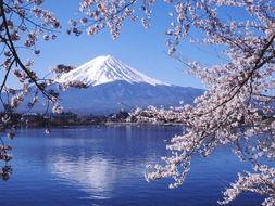 在北京留学日本人和在东京留学的中国人对比。