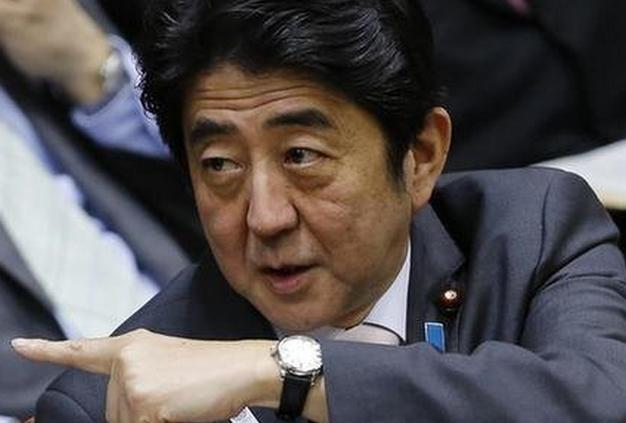 """日本太坑""""爹"""