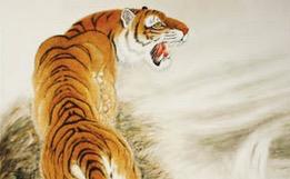 你家有虎吗?有就发财啦!