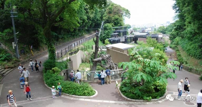 福冈有一个地方,能让大人小孩儿都得到高潮……