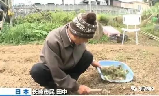 【话题】日本老年犯罪逐年增长,原来只是为了……