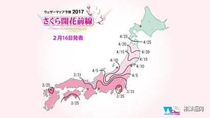 2017年日本樱花哪家强?