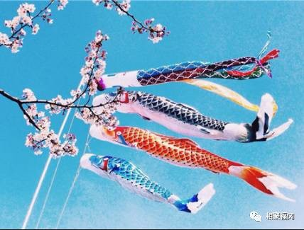日本的儿童节,作为吃货的大人该怎么凑热闹