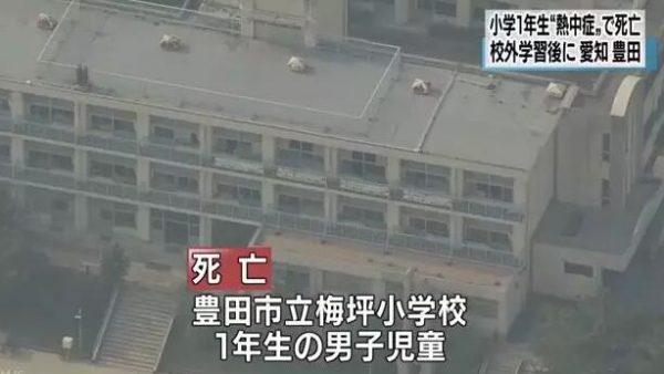 日本学校成中暑重灾区,我们该如何防暑呢?