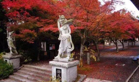 2018福冈县人气红叶名所5选,看这里就都搞定了