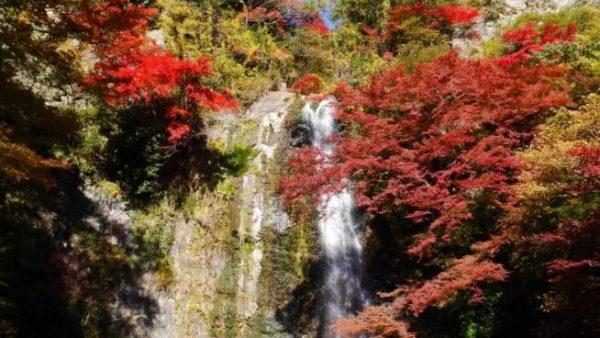 日本红叶观赏时期与景点大推荐