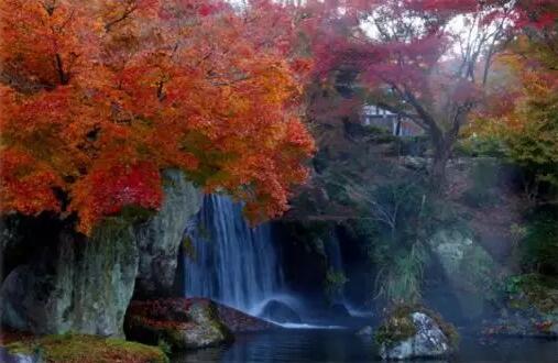 日本九州2018年末选出的日本人最爱的观光地,小众旅行就看这里