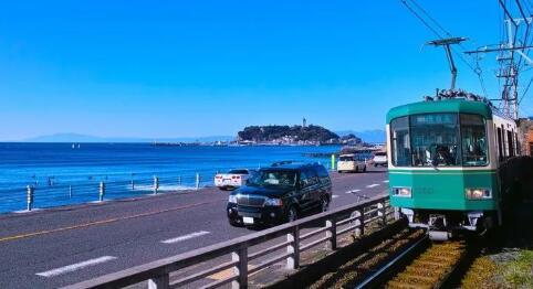 """日本这里有个动物比""""奈良鹿""""还狠,去玩的游客千万要小心"""
