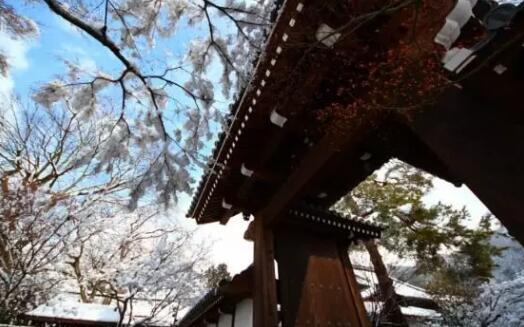 日本旅行|日本12-2月冬季的衣食住行须知,旅行必读