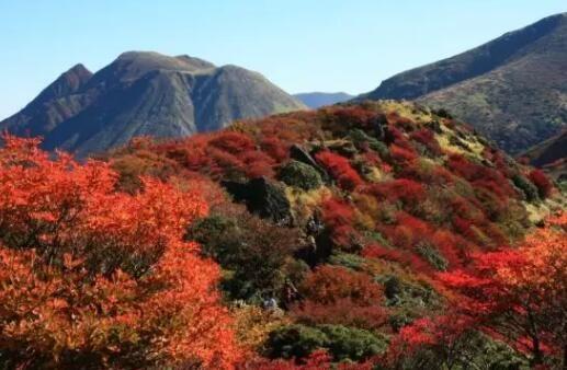 日本九州|在大分九重町国立公园滑雪看四季绝景