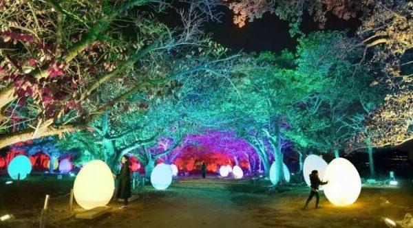 日本福冈|近期活动,看展观灯肯定有一个是你喜欢的