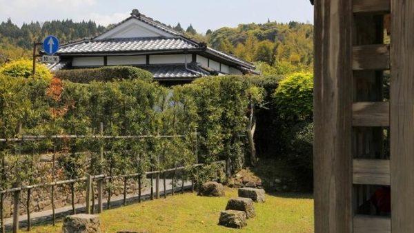 日本九州鹿儿岛旅游攻略
