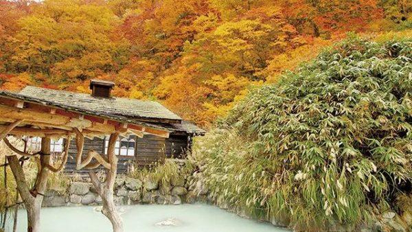 日本老人最多的秋田县,原来是这么仙气十足的赏红叶胜地...