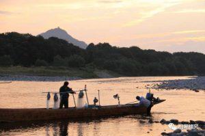 日本夏季限定,带上鸟儿去捕鱼。