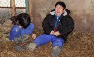 日本人的冷血教育:让小学生围观现场杀鲸