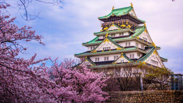 秋季在日本要注意什么?行李箱秋季打包穿衣指南