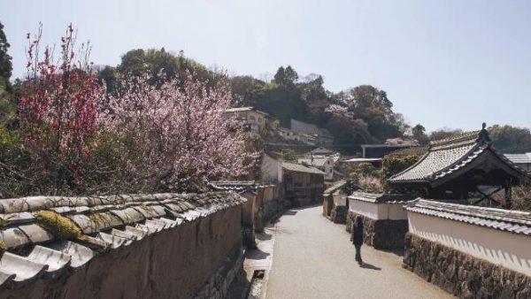 【日本九州自由行之大分】在九州最中心的竹田市感受不一样的情与怀