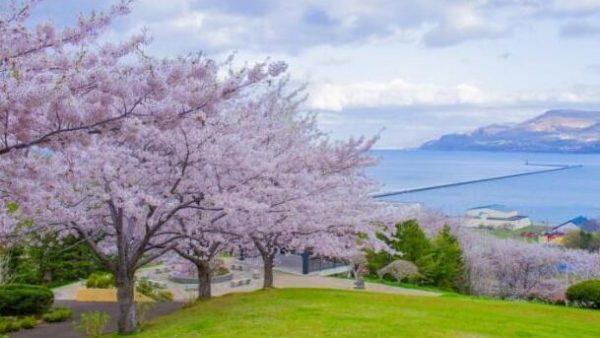 旅行推荐 看图学习去北海道前必看的穿衣指导