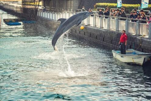 日本九州 | 跟着达人去九州打卡不可错过的景点,快加入你的旅行清单!