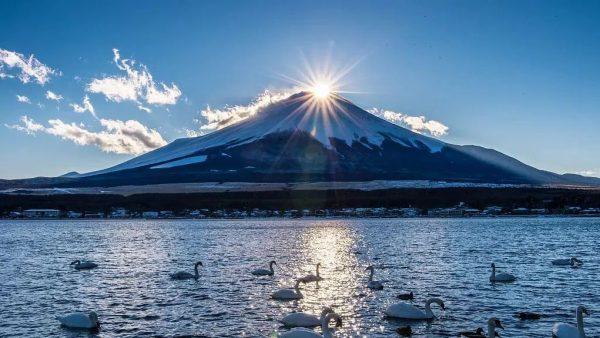 日本留学|日本多达十一种签证方式各有哪些优劣势?