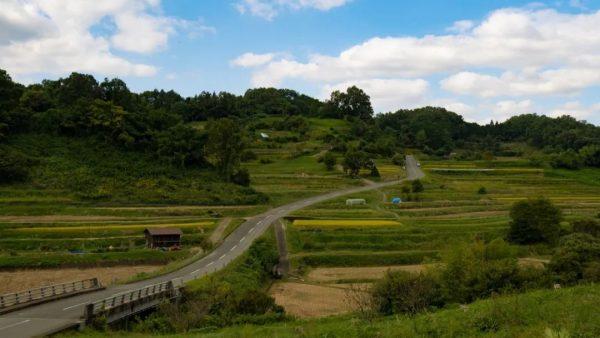 想去奈良的理由除了鹿和古寺,还有……